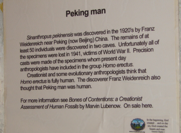 Peking-Man poster