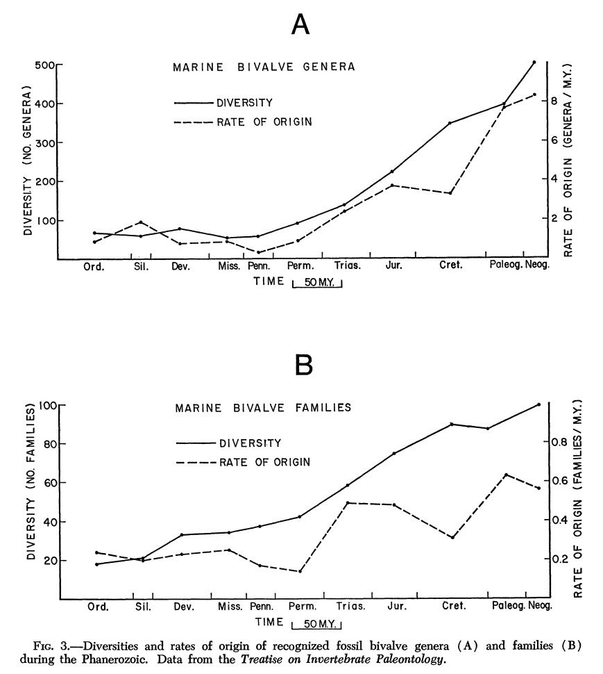 Bivalve diversity over time