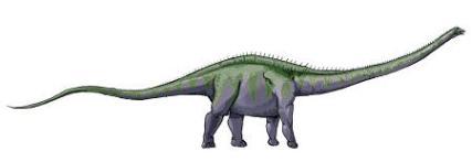 i1_supersaurus_dinosaur_edited_s