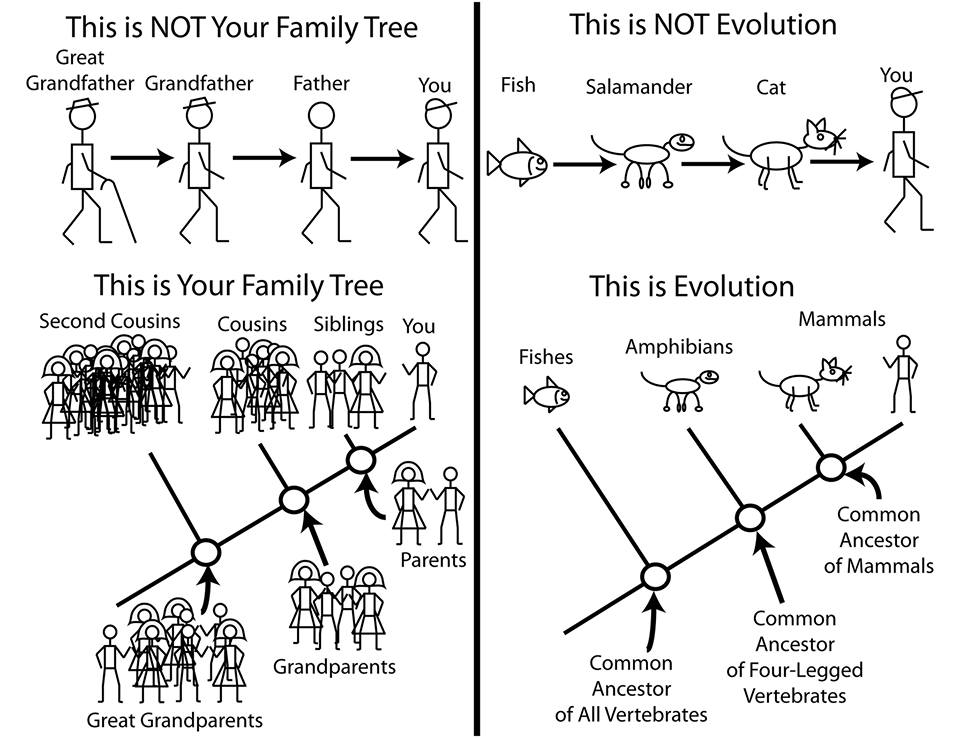 "Credit: M.F. Bonnan via ""I f***ing love science (on Facebook)."