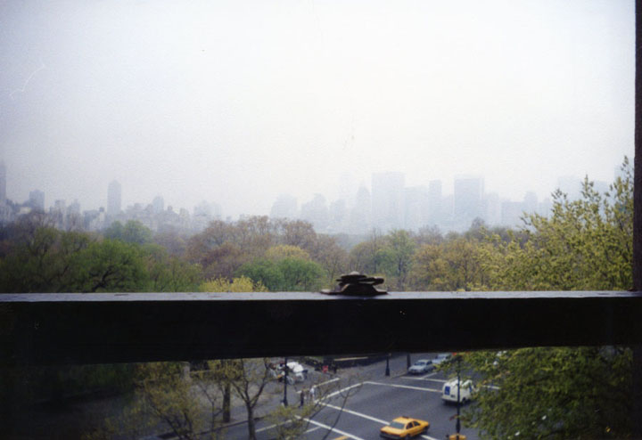 Looking out one of the AMNH windows onto Central Park.