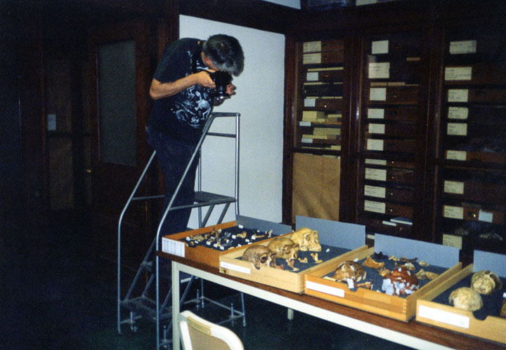 Don, doing what Don does, taking lots of pictures in this case of casts of the Peking Man fossils.